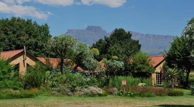 Cathkin Peak and Monks Cowl from INKOSANA Berg Lodge